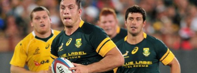 Nkosi, Schreuder and Louw added to Springbok squad