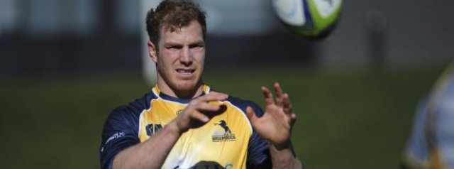 Pocock's Super Rugby return delayed