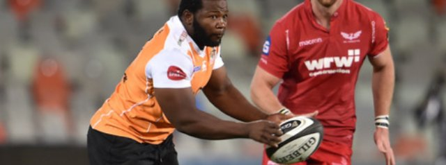Ox Nche to attend Springbok alignment camp