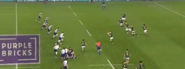 WATCH: The Springboks score arguably the try of the Weekend
