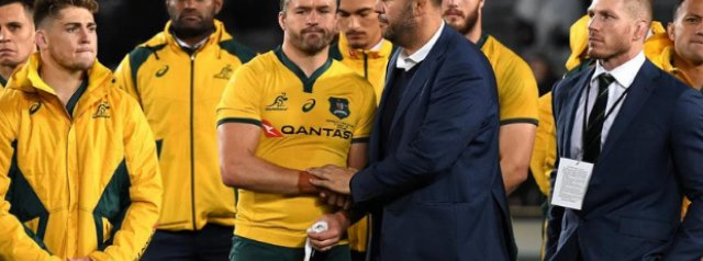 Cheika: Australia must take Bledisloe Cup blow on the chin