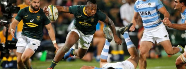 Springboks rely on Nkosi class to see off Pumas