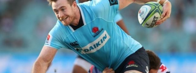 Jed Holloway signs short-term deal with Munster