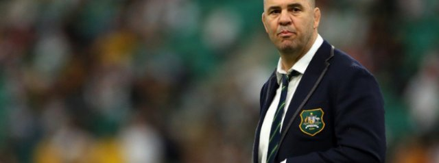Michael Cheika linked with Top 14 giants