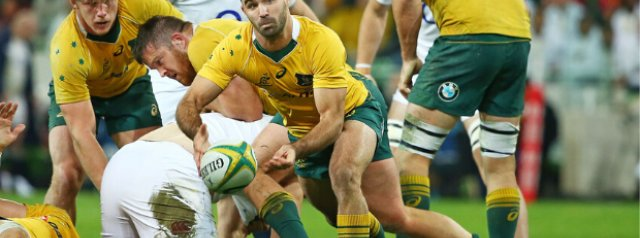 Western Force recruit experienced Wallabies