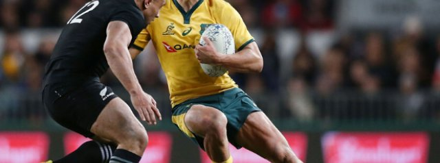 The next Wallaby 15
