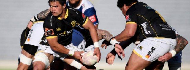 Mitre 10 Cup Round 3 Preview - Wellington vs Bay Of Plenty
