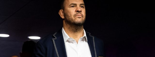 Michael Cheika lands Pumas coaching gig