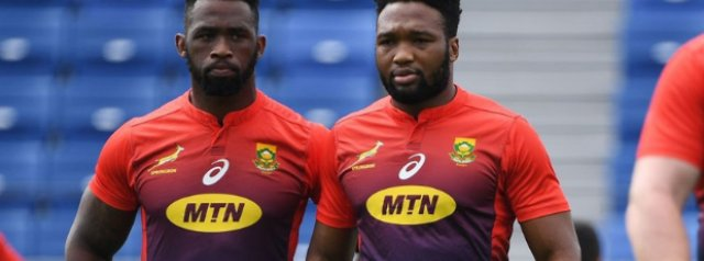 Siya Kolisi and Lukhanyo Am to lead Springbok Green and Gold teams