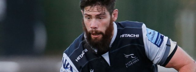 Newcastle Falcons' Greg Peterson prepares for Wasps challenge