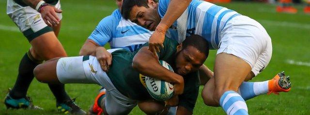 Springboks to host Argentina in Nelson Mandela Bay