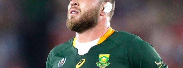 Springboks welcome back stalwart number 8