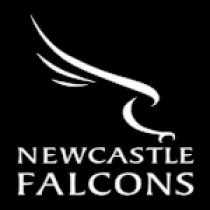 newcastle-falcons